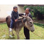 Erick inspiró a crear una fundación que cumple los sueños de muchos niños