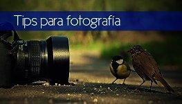 Tips para lograr una fotografía profesional