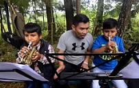 """La Orquesta de las Verduras"""